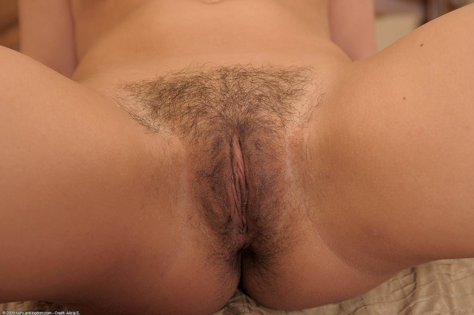 huge hairy cock pictures
